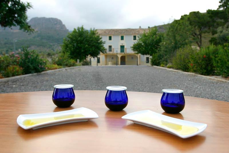 Señoríos de Relleu | Venta Online de Aceite de Oliva Virgen Extra - Historia