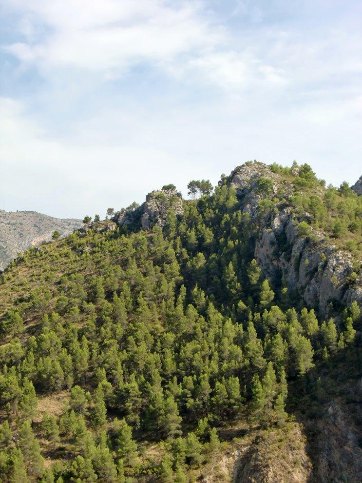 Señoríos de Relleu - El entorno - Masia Teuladi